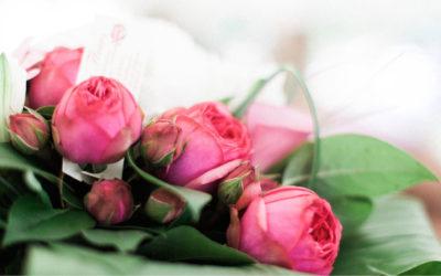Fiori di fine estate: quali usare per creare i bouquet più belli e profumati