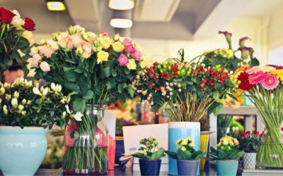 Ingrosso di fiori recisi a Varese: Varese in Fiore è il negozio che fa per te