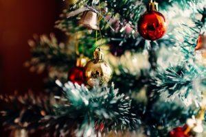 Albero di Natale vero a Varese