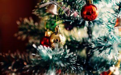Albero di Natale vero: come prendersene cura e dove acquistarlo a Varese