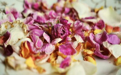Come creare stampe con i fiori: un'idea divertente per grandi e piccini